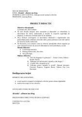 proiect.doc..doc